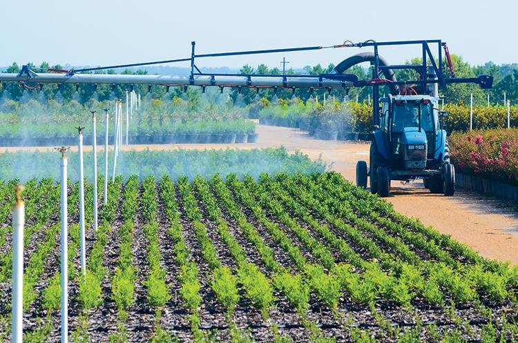 les industries de l'agriculture et de l'horticulture en Tunisie